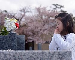納骨後、お墓に手を合わせる少女